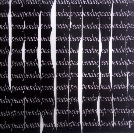 Mendes, F. (2014). Pela pendurada (Hanging skin). Digital Image. 14x22 cm.